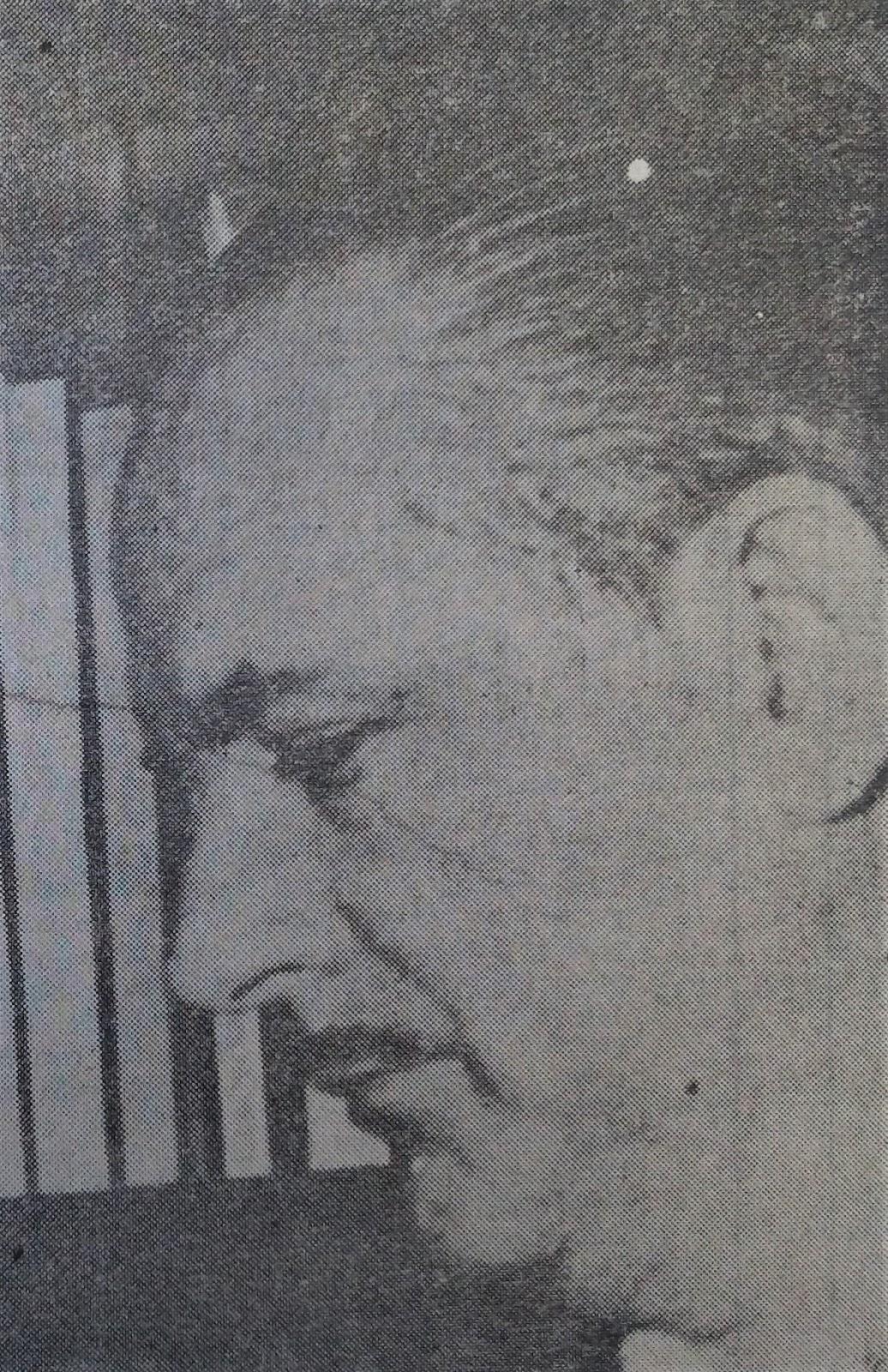 Pioneiro: Lauro Eduardo Werneck