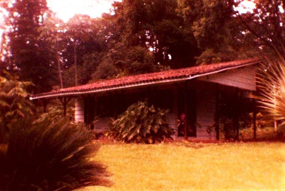 Administração do Horto Florestal - Década de 1980