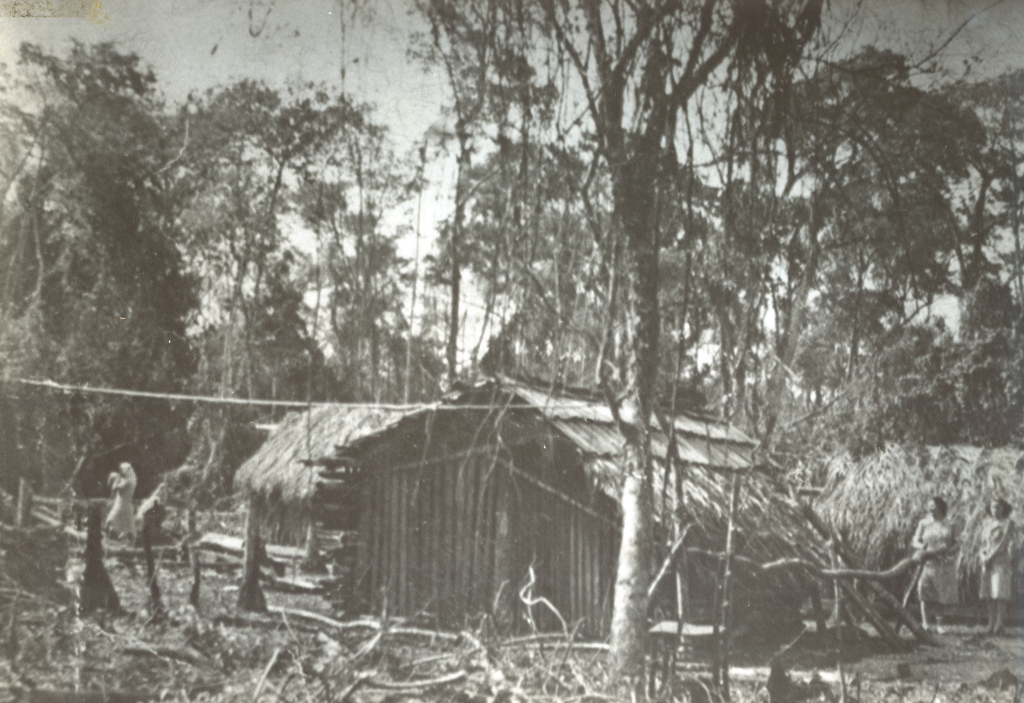 Ranchos do Norte do Paraná - Década de 1940