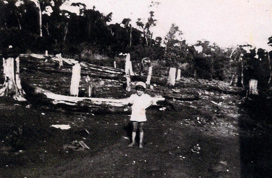 Alcides Siqueira - 1951
