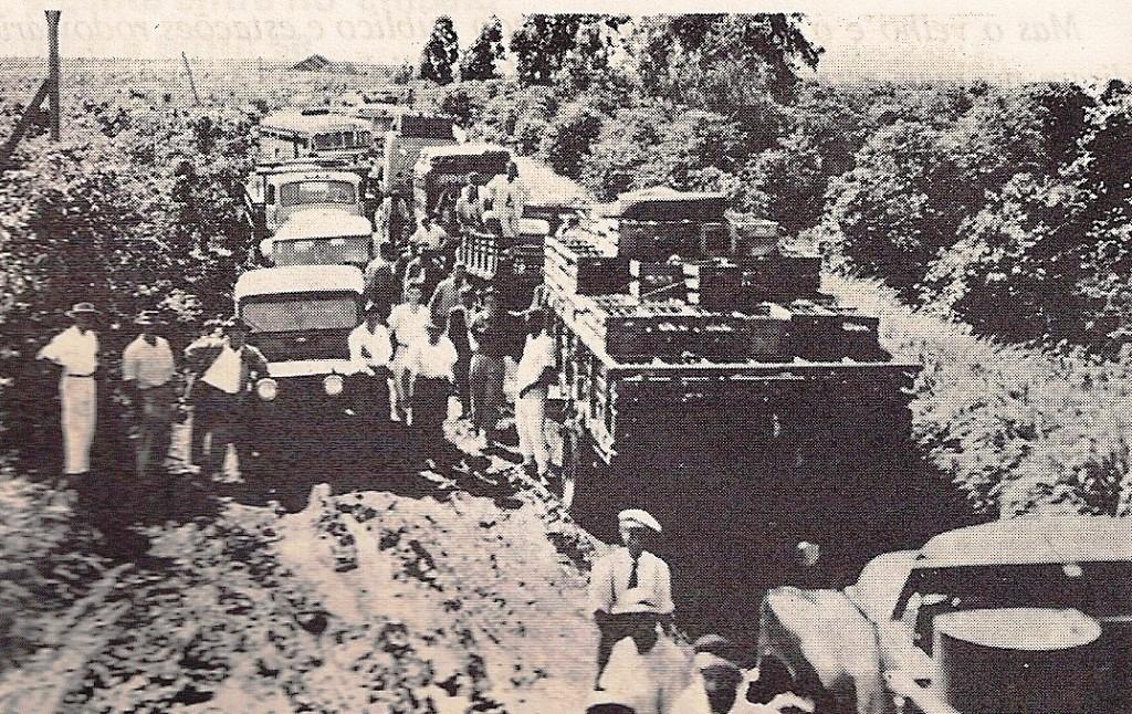 Estrada de Marialva a Maringá - Década de 1950