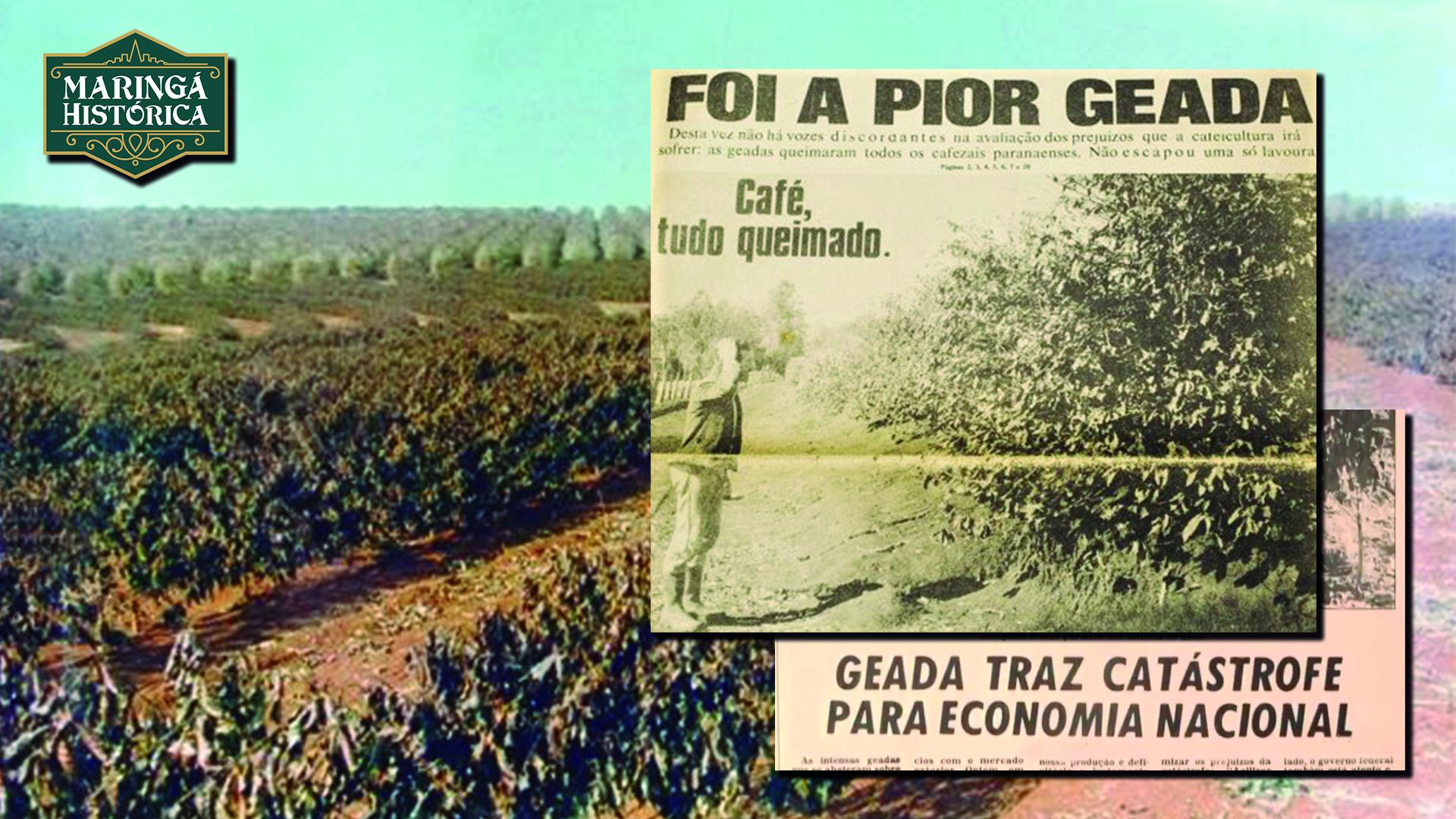 Geada Negra de 1975
