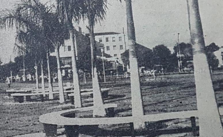 Palmeiras da praça Napoleão Moreira da Silva - 1964