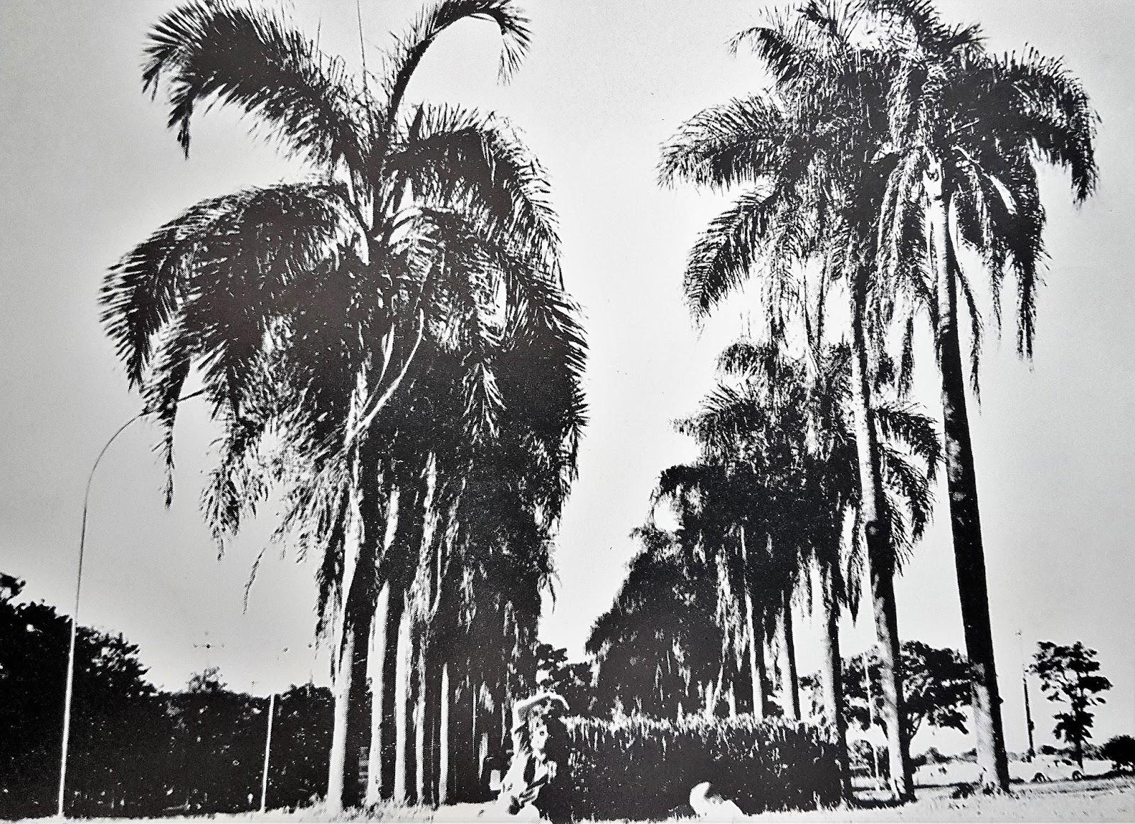 Praça Salgado Filho - Início dos anos 1990