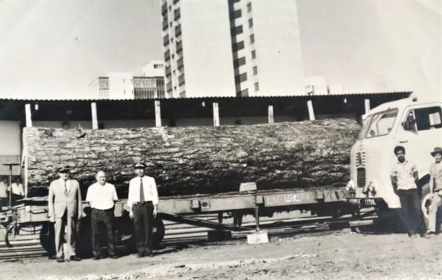 Embarque de tora na Estação Ferroviária - 1971