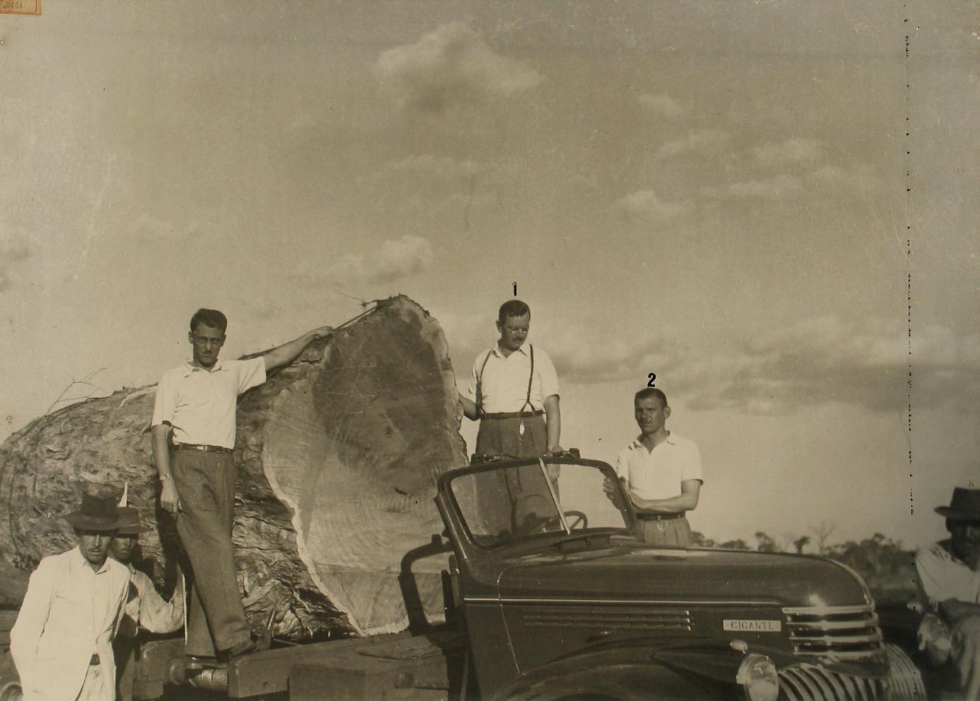 Pioneiros: Basílio Sautchuk e Arlindo Marquezine