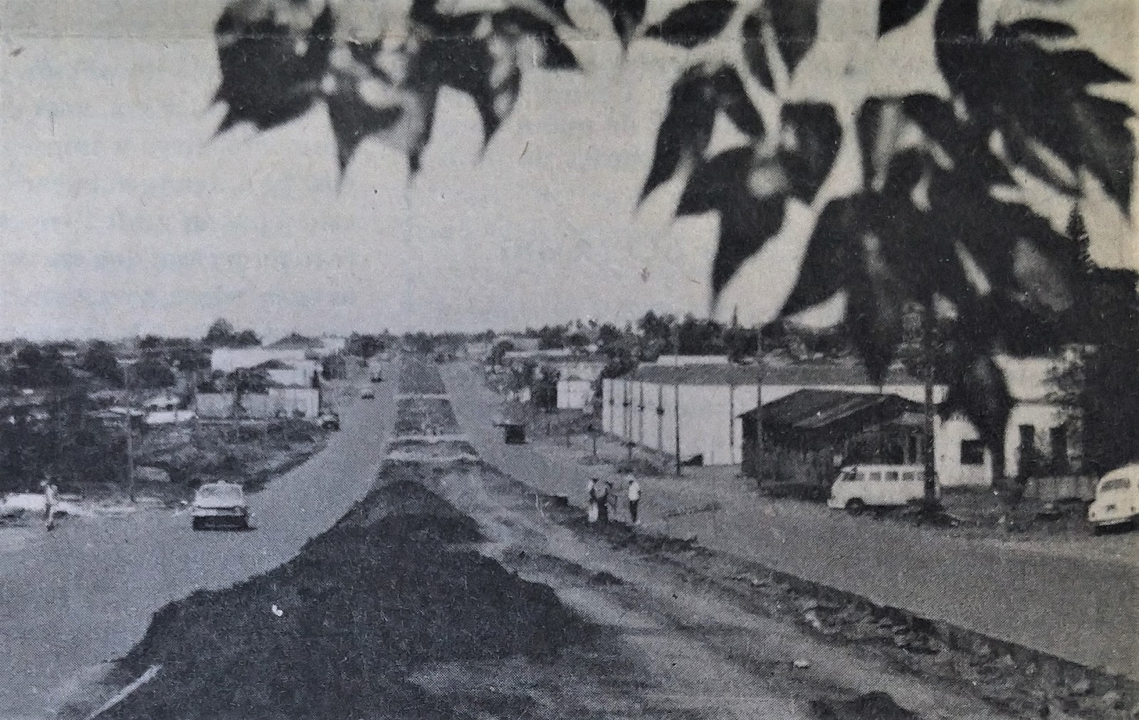 Avenida Colombo - 1975