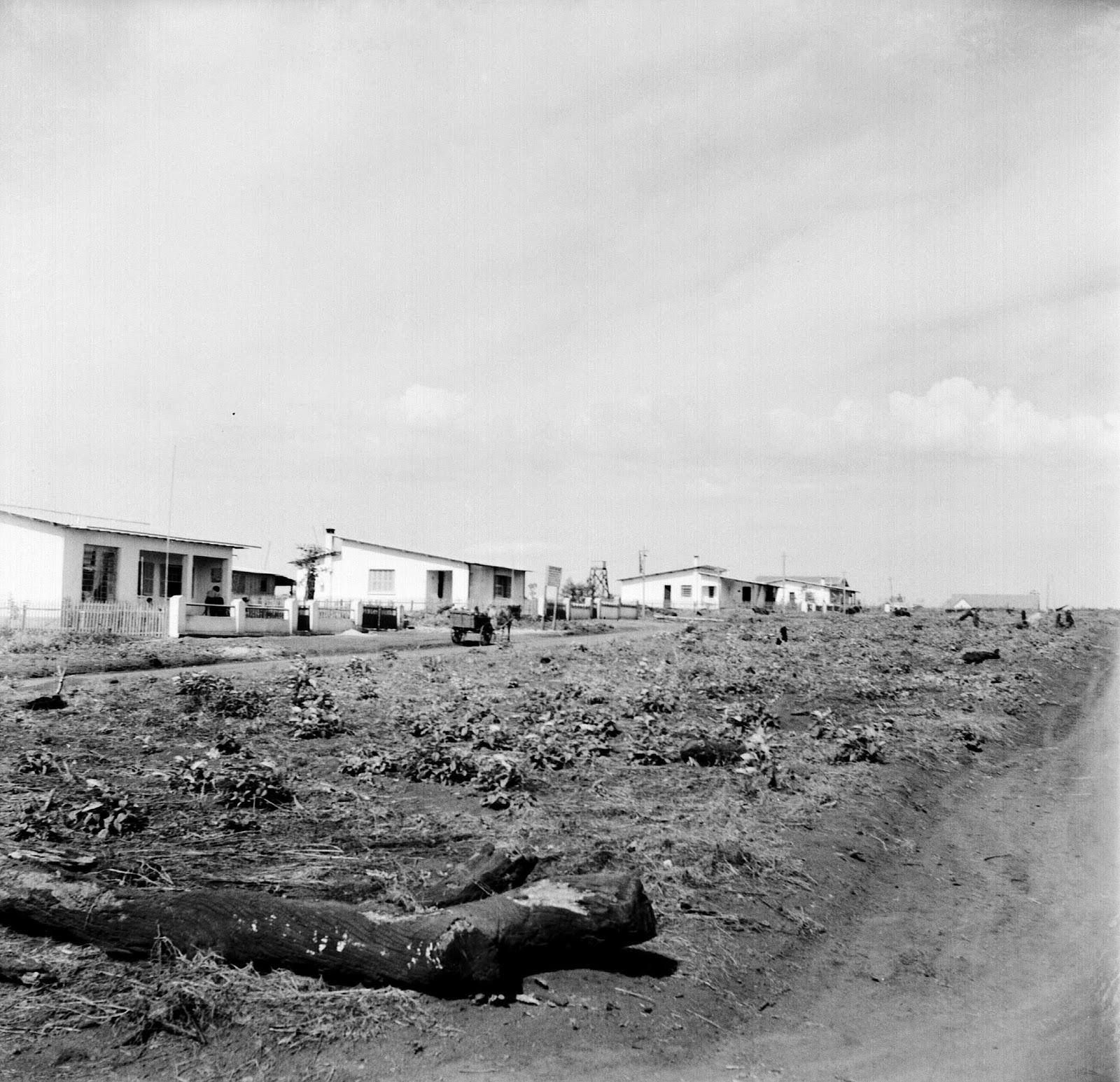 Avenida Tiradentes - 1950