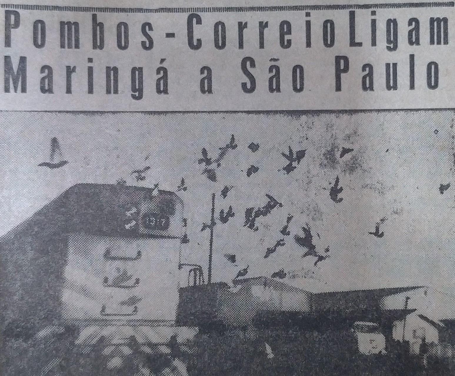 Pombos-correios - Julho de 1963