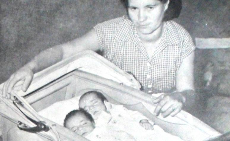 Gêmeos - Década de 1950