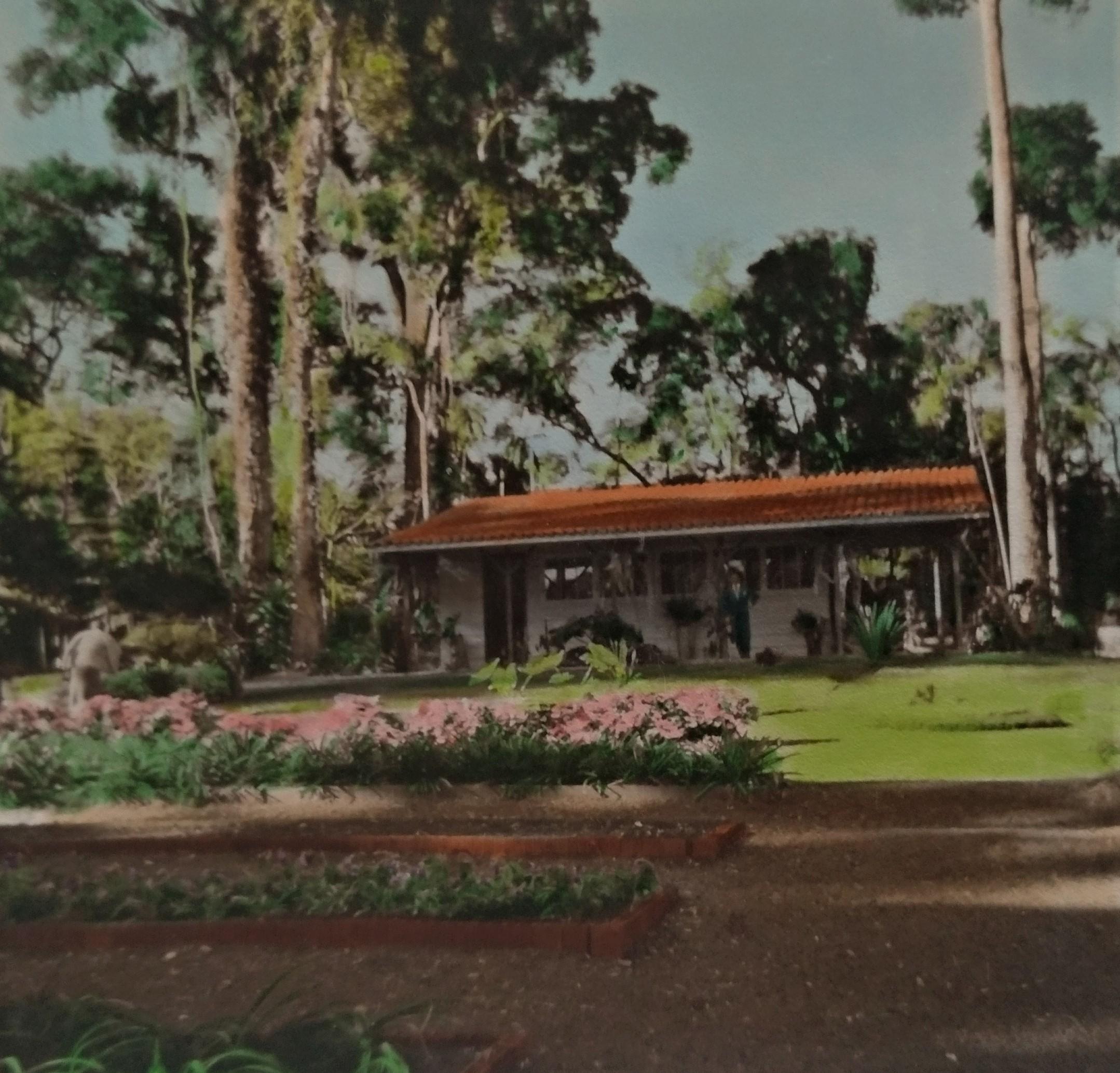 Joubert de Carvalho no Horto Florestal - 1959